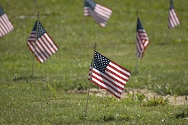 flags in cemetery