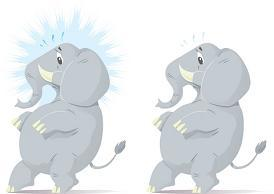 nervous_elephant
