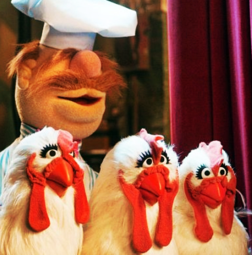 Swedish chef muppet with chickens