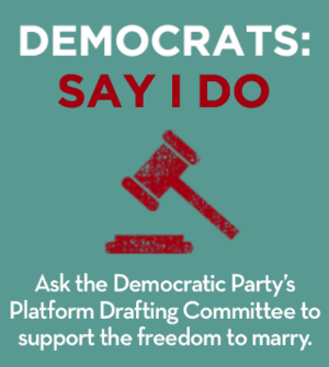 democratic party platform 2009 summary