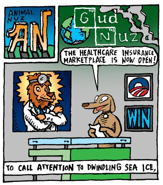 Animal Jam Comic Strips