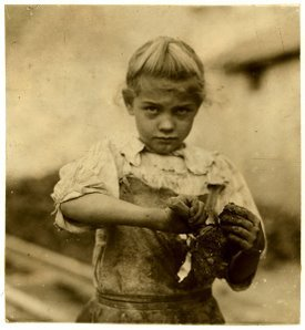 7 year old oyster shucker