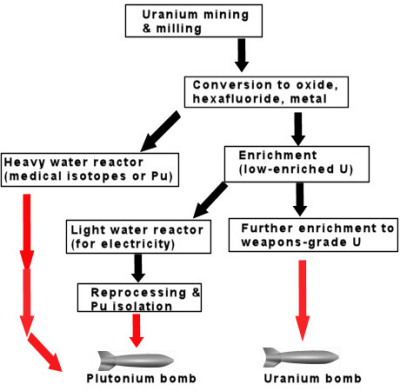 The potential dual use nature of the nuclear fuel cycle. Click to enlarge.